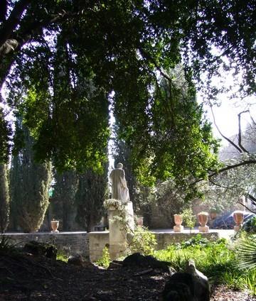 Fr montpellier un jardin au c ur de la ville - Terrasse et jardin en ville montpellier ...