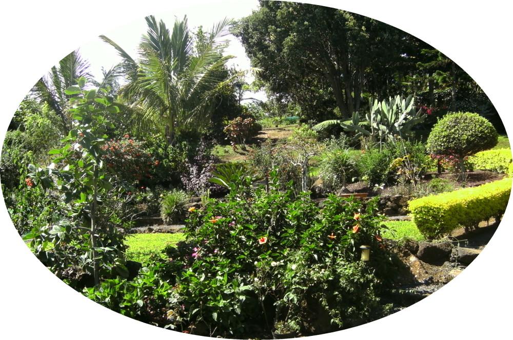 Fr le de la r union jardin des fontaine paysage et for Entretien jardin ile de la reunion