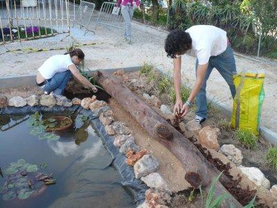 la construction d un bassin dans le jardin de l cole et son potentiel comme ressource ducative. Black Bedroom Furniture Sets. Home Design Ideas