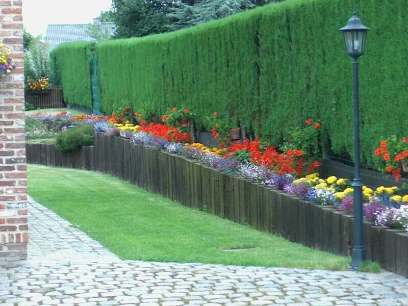 Un jardin des jardins paysage et patrimoine sans fronti re for Paysage de jardin