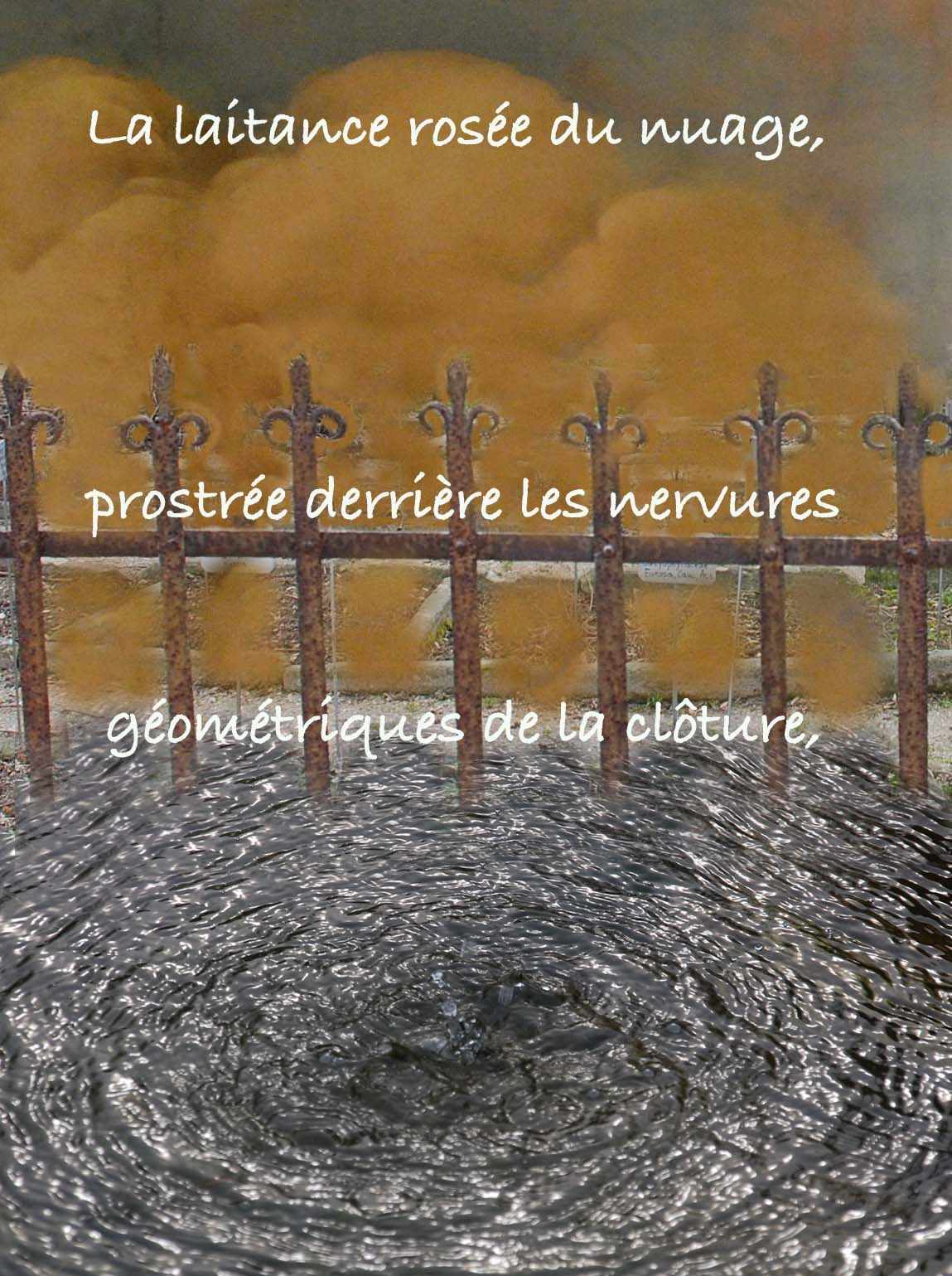 Phrase marrante site de rencontre